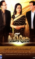 chain-aye-na-geo-urdu-channel-dramas-500x500