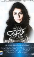 ek-nazer-meri-taraf-geo-urdu-pakistani-dramas-dvd-500x500