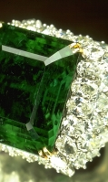 emerald-31