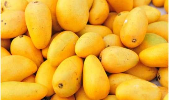 Buy Mango Online