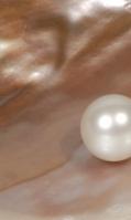 pearl-17